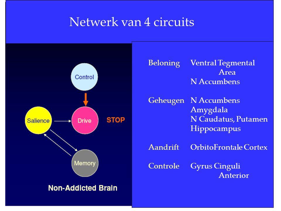 16 Netwerk van 4 circuits Beloning Ventral Tegmental Area N Accumbens GeheugenN Accumbens Amygdala N Caudatus, Putamen Hippocampus AandriftOrbitoFront