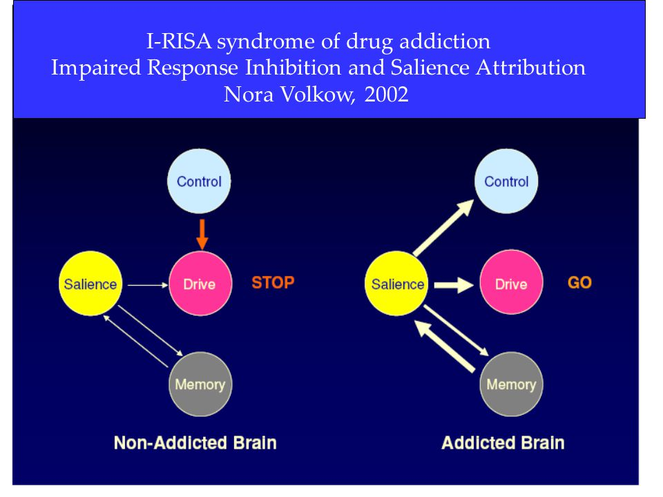 17 I-RISA syndrome of drug addiction Impaired Response Inhibition and Salience Attribution Nora Volkow, 2002