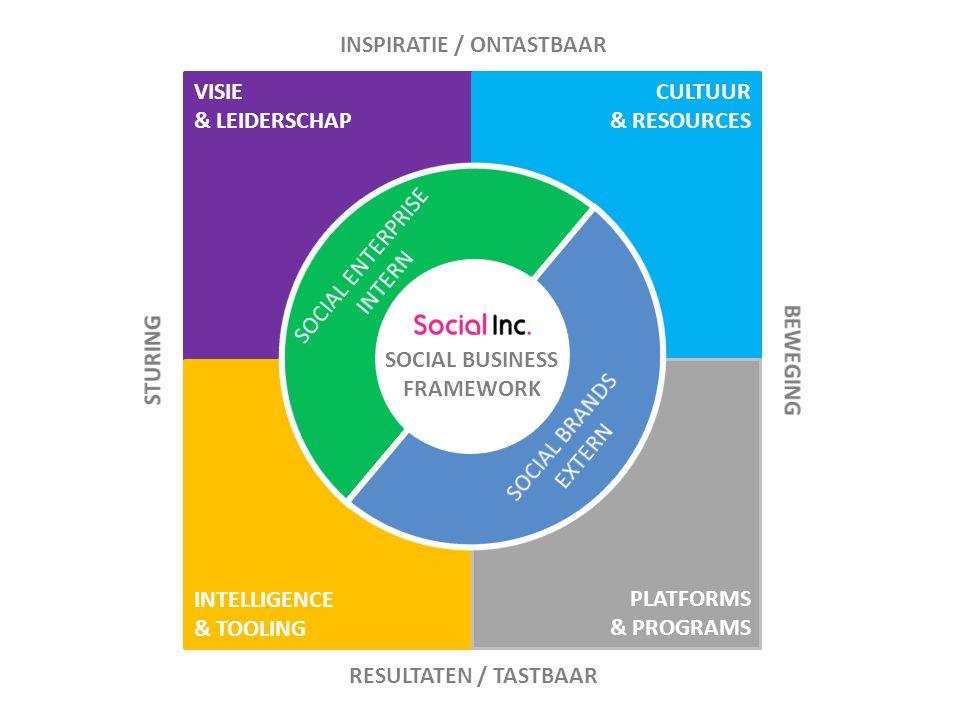 VISIE & LEIDERSCHAP CULTUUR & RESOURCES PLATFORMS & PROGRAMS INTELLIGENCE & TOOLING SOCIAL BUSINESS FRAMEWORK INSPIRATIE / ONTASTBAAR RESULTATEN / TASTBAAR