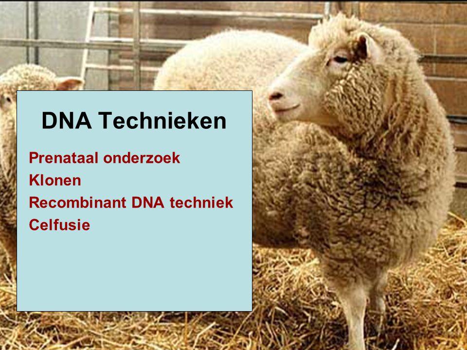 Prenataal onderzoek Klonen Recombinant DNA techniek Celfusie DNA Technieken