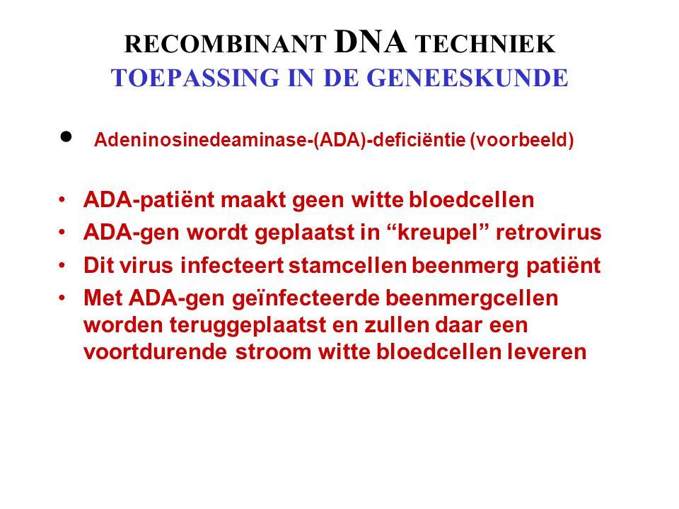 MONOCLONALE ANTLICHAAM TECHNIEK TOEPASSINGEN IN DE GENEESKUNDE