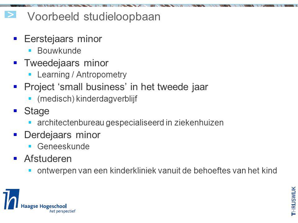 Voorbeeld studieloopbaan  Eerstejaars minor  Bouwkunde  Tweedejaars minor  Learning / Antropometry  Project 'small business' in het tweede jaar 