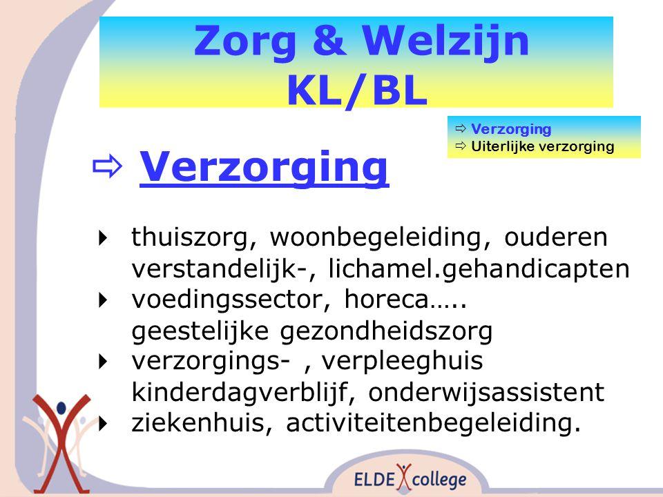 Zorg & Welzijn KL/BL  Verzorging  thuiszorg, woonbegeleiding, ouderen verstandelijk-, lichamel.gehandicapten  voedingssector, horeca…..