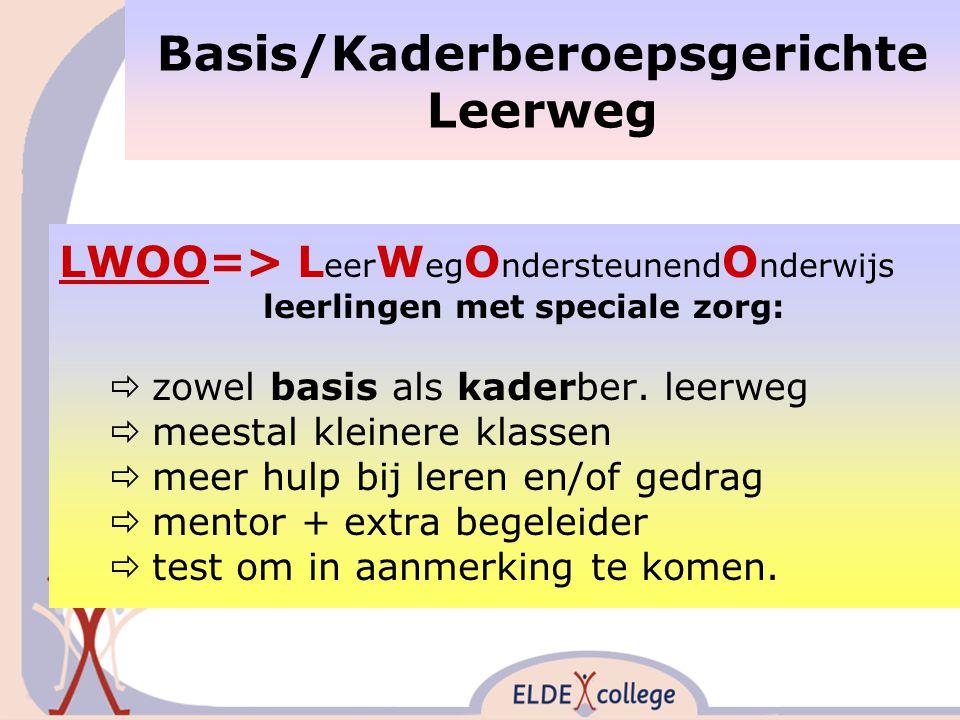 Basis/Kaderberoepsgerichte Leerweg LWOO=> L eer W eg O ndersteunend O nderwijs leerlingen met speciale zorg:  zowel basis als kaderber.
