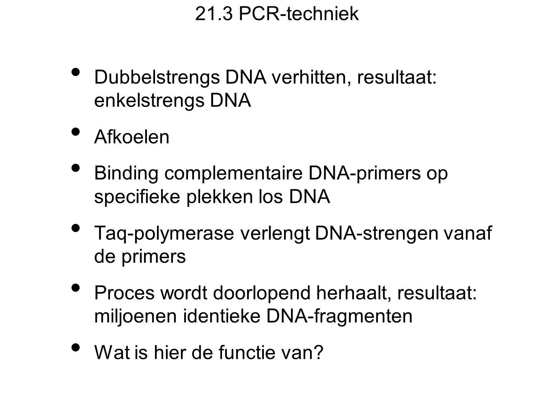 21.3 PCR-techniek Dubbelstrengs DNA verhitten, resultaat: enkelstrengs DNA Afkoelen Binding complementaire DNA-primers op specifieke plekken los DNA Taq-polymerase verlengt DNA-strengen vanaf de primers Proces wordt doorlopend herhaalt, resultaat: miljoenen identieke DNA-fragmenten Wat is hier de functie van?