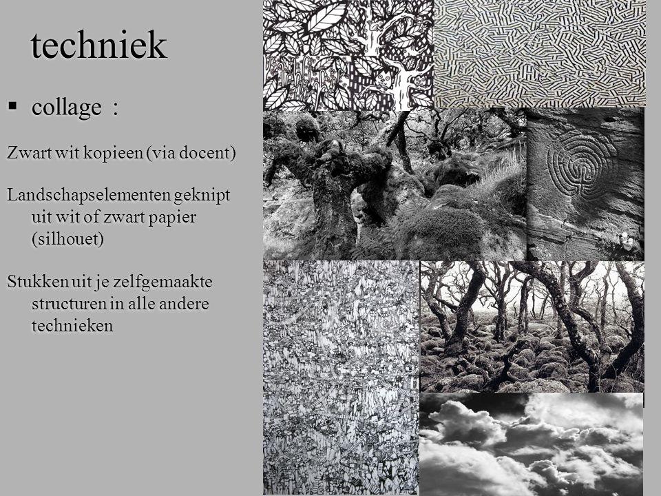 techniek  collage : Zwart wit kopieen (via docent) Landschapselementen geknipt uit wit of zwart papier (silhouet) Stukken uit je zelfgemaakte structu