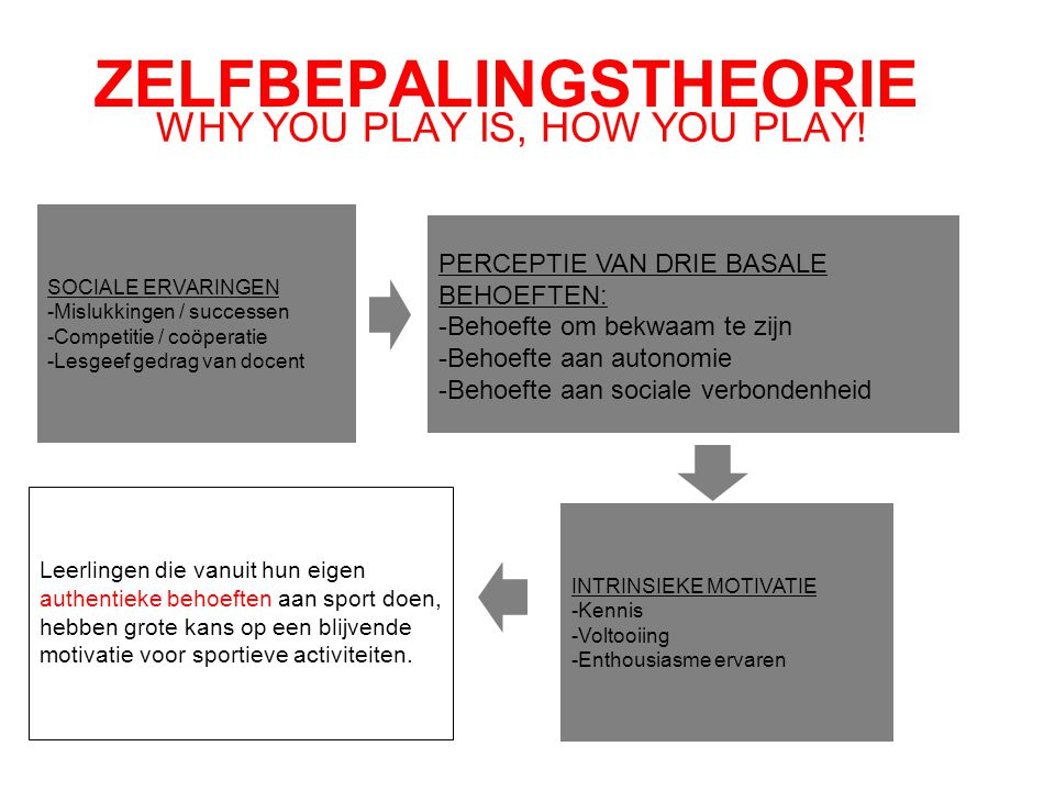 WHY YOU PLAY IS, HOW YOU PLAY! ZELFBEPALINGSTHEORIE SOCIALE ERVARINGEN -Mislukkingen / successen -Competitie / coöperatie -Lesgeef gedrag van docent P