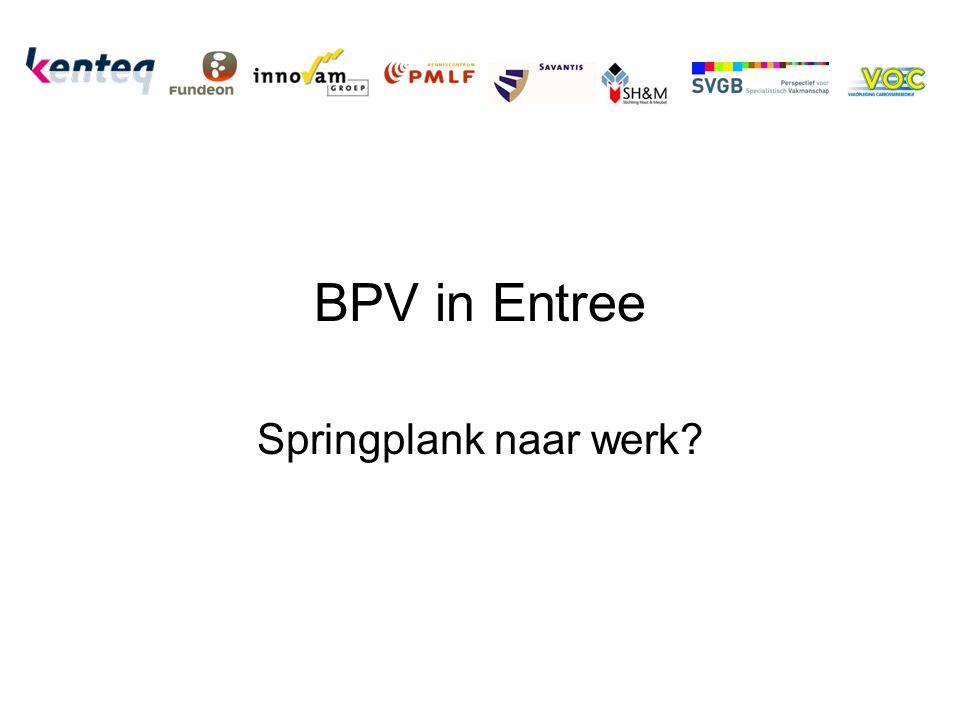 BPV in Entree Springplank naar werk?