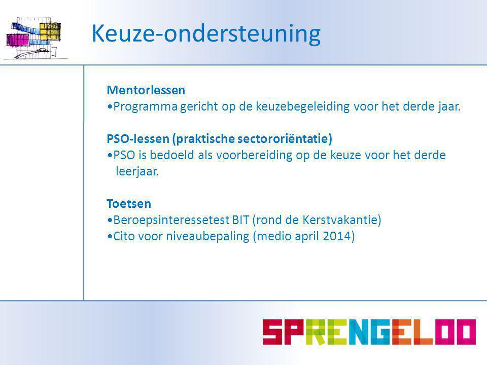 Mentorlessen Programma gericht op de keuzebegeleiding voor het derde jaar.
