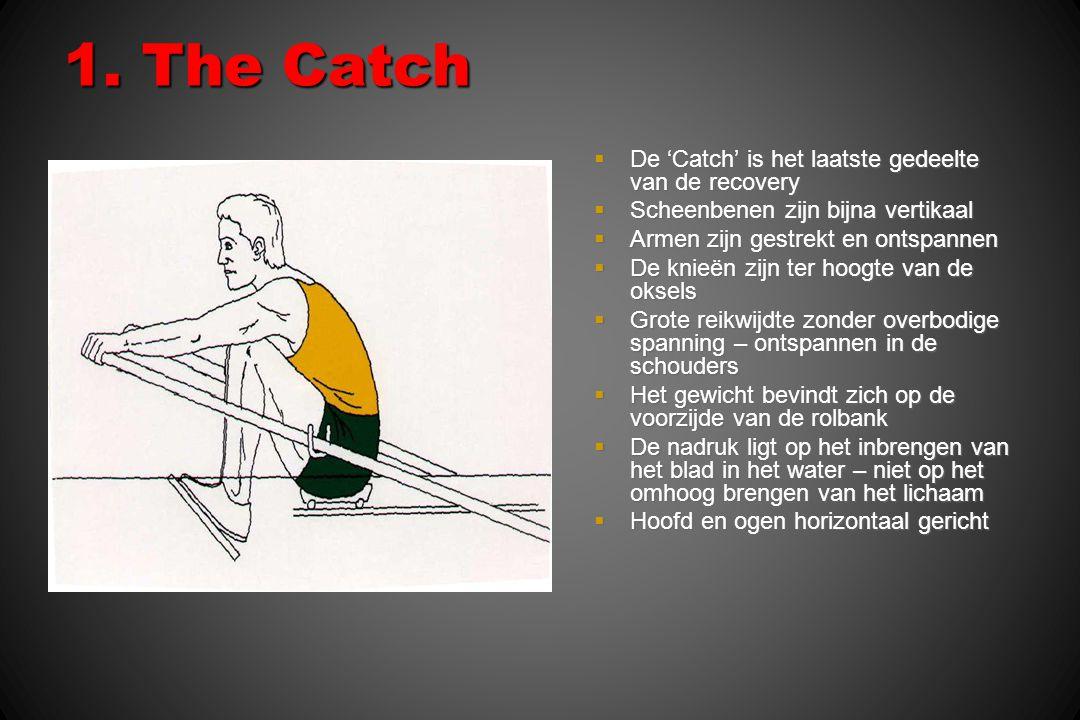 1. The Catch  De 'Catch' is het laatste gedeelte van de recovery  Scheenbenen zijn bijna vertikaal  Armen zijn gestrekt en ontspannen  De knieën z