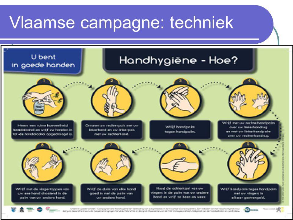 Vlaamse campagne: techniek