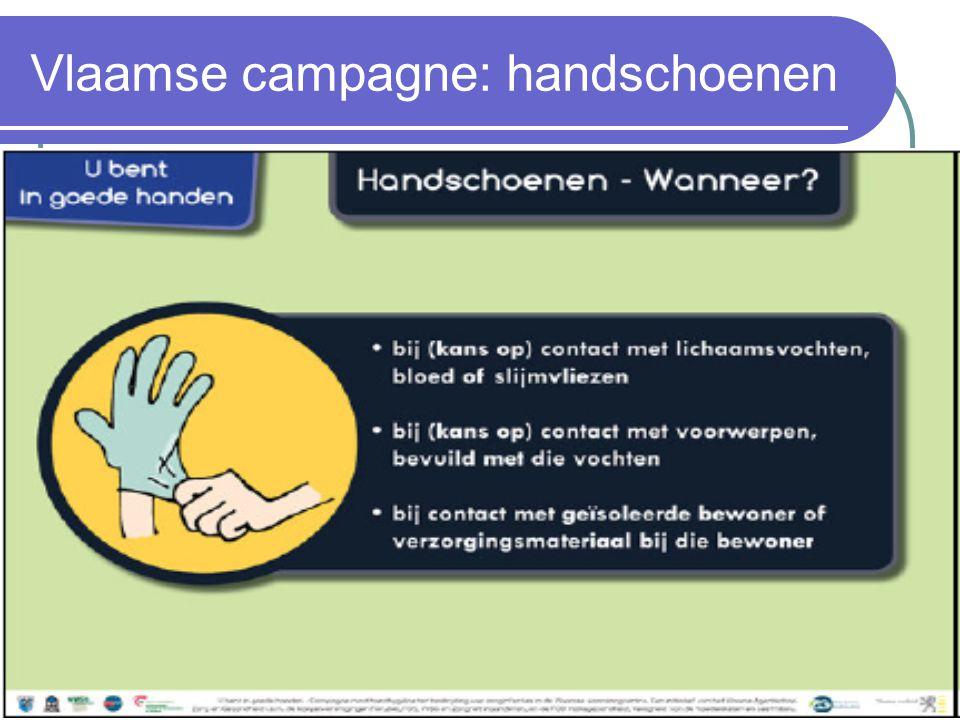Vlaamse campagne: handschoenen