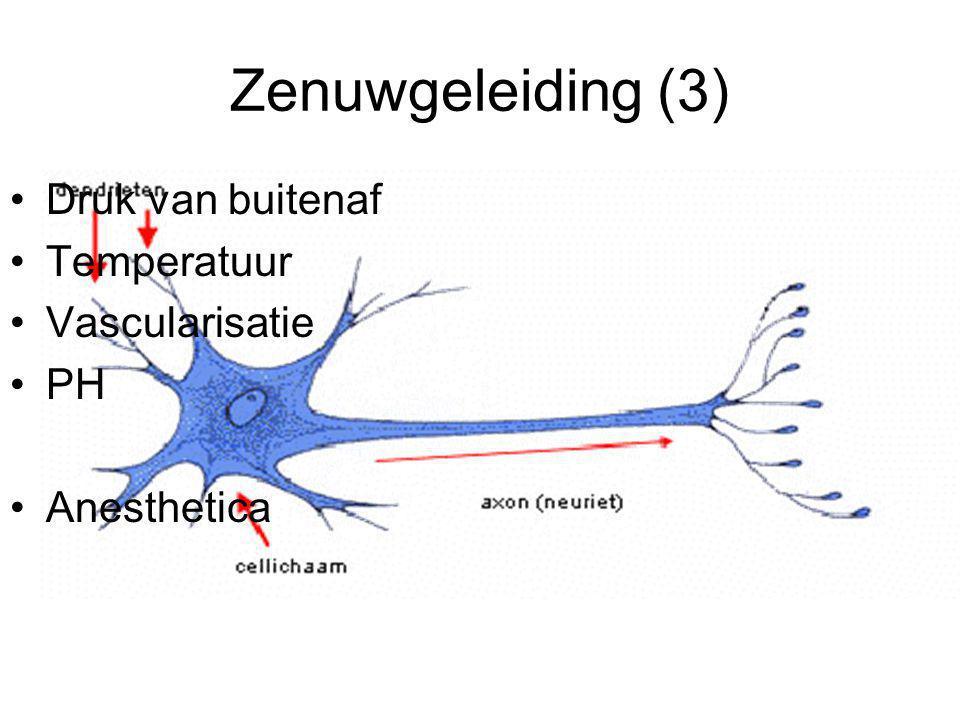 Werking 1) Het lokale anestheticum 2) Compressie van de zenuwen 3) Bloedleegte 4) Ischemie/Hypoxie