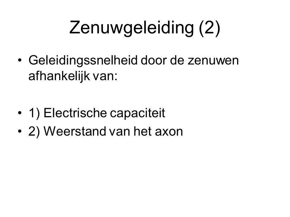 Zenuwgeleiding (3) Druk van buitenaf Temperatuur Vascularisatie PH Anesthetica