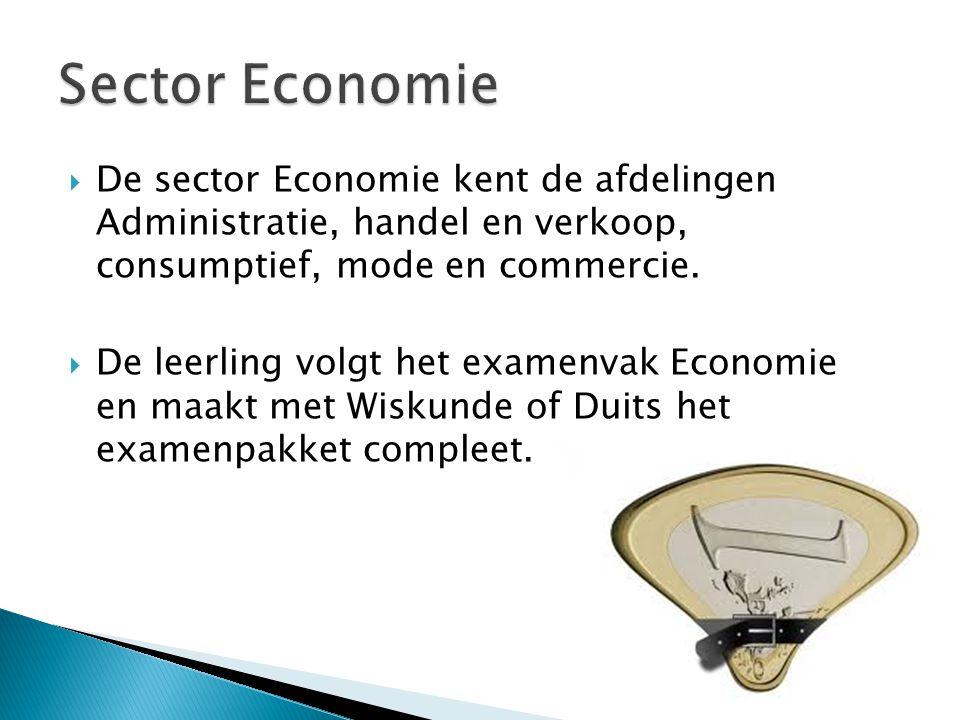  De sector Economie kent de afdelingen Administratie, handel en verkoop, consumptief, mode en commercie.  De leerling volgt het examenvak Economie e