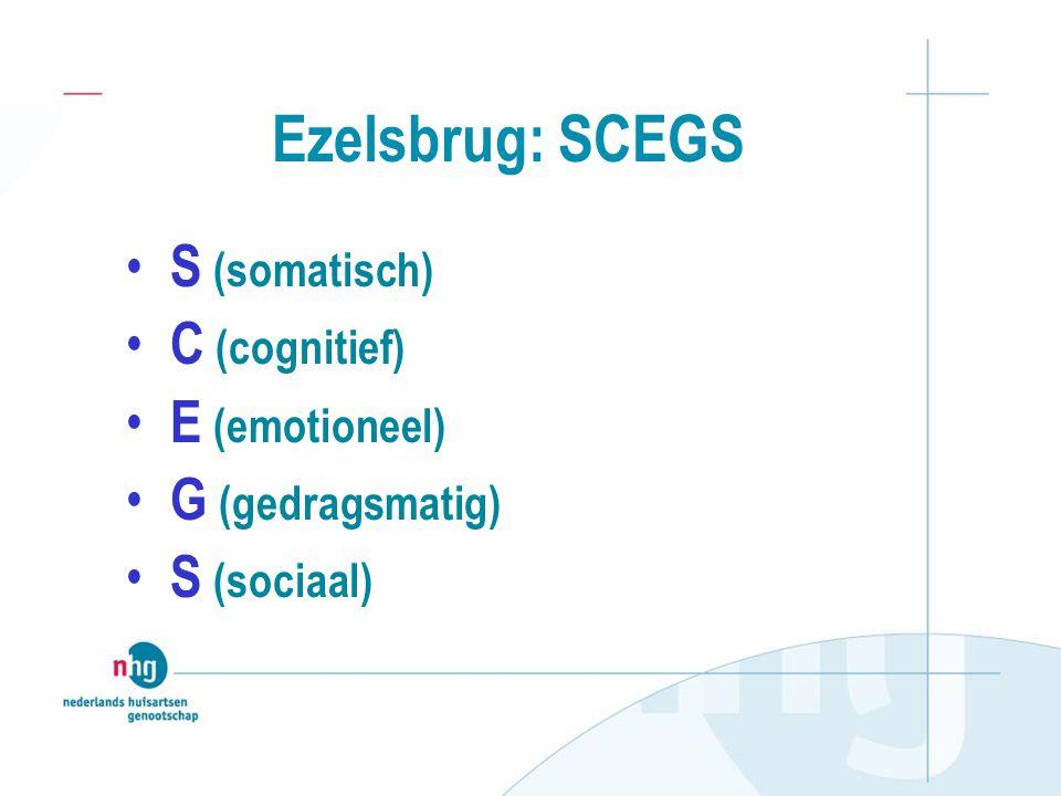 Ezelsbrug: SCEGS S (somatisch) C (cognitief) E (emotioneel) G (gedragsmatig) S (sociaal)