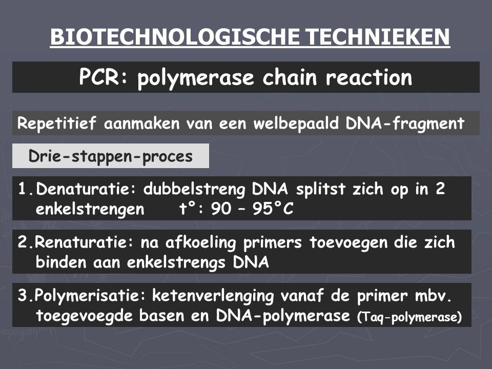 BIOTECHNOLOGISCHE TECHNIEKEN PCR: polymerase chain reaction Repetitief aanmaken van een welbepaald DNA-fragment 1.Denaturatie: dubbelstreng DNA splits