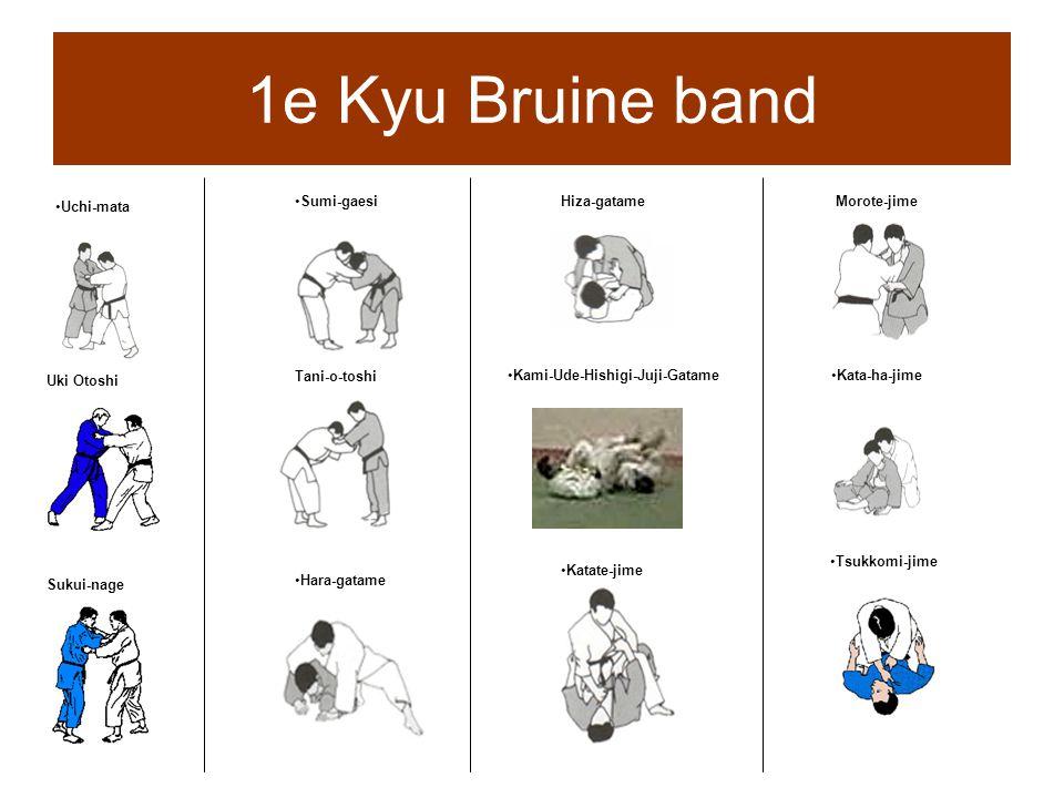 1e Kyu Bruine band Uchi-mata Uki Otoshi Sukui-nage Sumi-gaesi Tani-o-toshi Hara-gatame Hiza-gatame Kami-Ude-Hishigi-Juji-Gatame Katate-jime Morote-jim