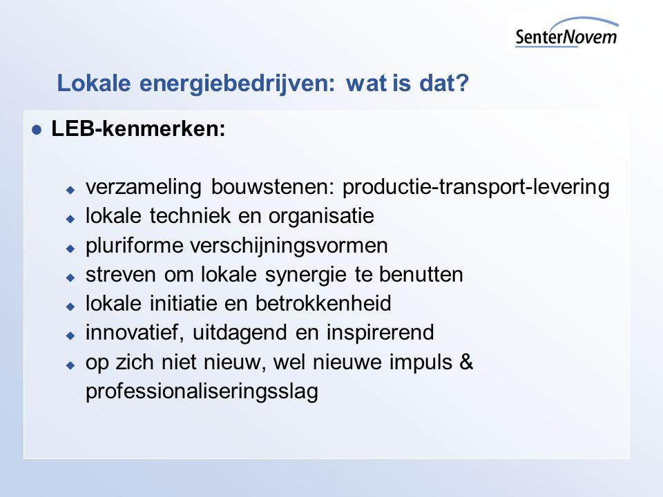 Lokale energiebedrijven: wat is dat? LEB-kenmerken:  verzameling bouwstenen: productie-transport-levering  lokale techniek en organisatie  plurifor