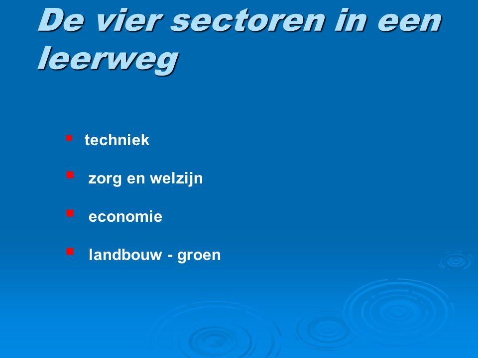 De vier sectoren in een leerweg  techniek  zorg en welzijn  economie  landbouw - groen