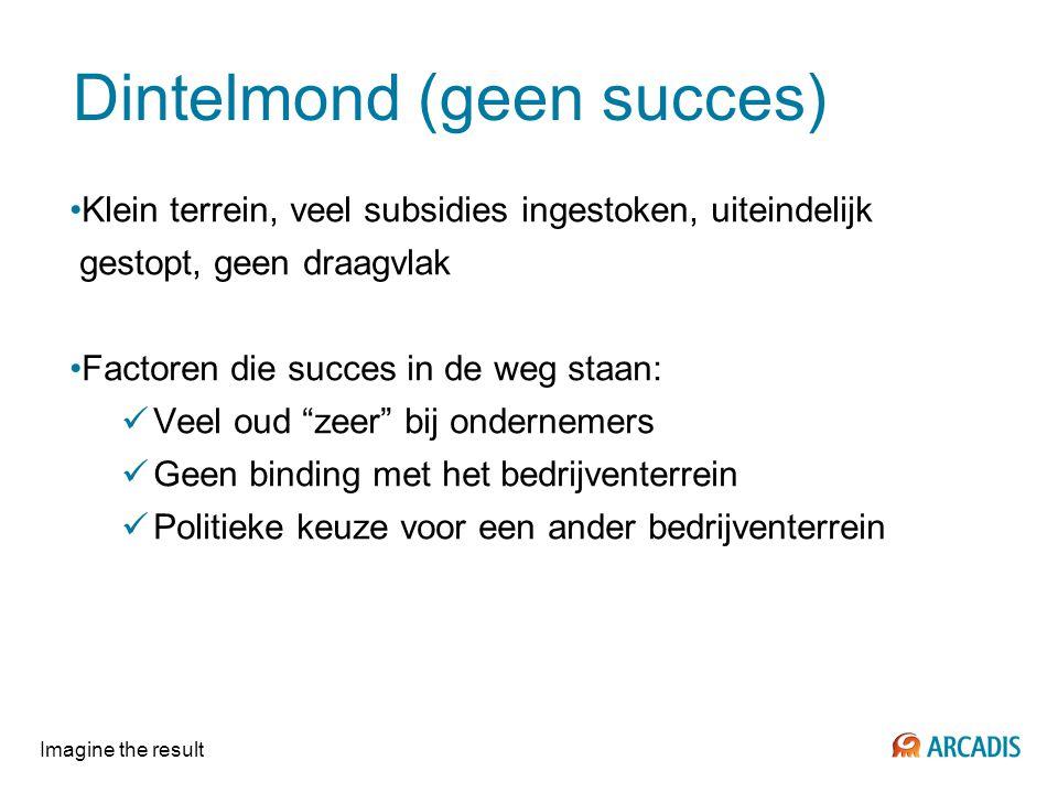 Imagine the result Dintelmond (geen succes) Klein terrein, veel subsidies ingestoken, uiteindelijk gestopt, geen draagvlak Factoren die succes in de w