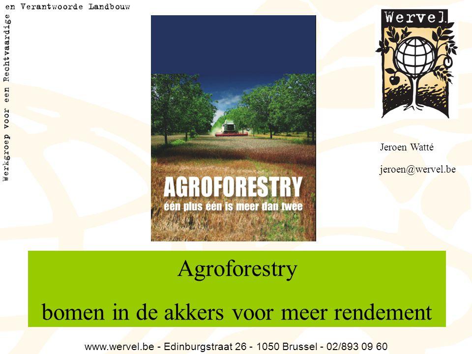 Agroforestry bomen in de akkers voor meer rendement www.wervel.be - Edinburgstraat 26 - 1050 Brussel - 02/893 09 60 Jeroen Watté jeroen@wervel.be