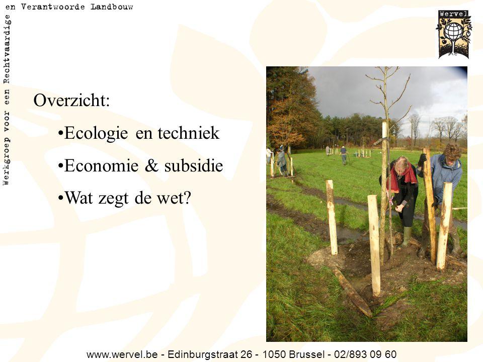 www.wervel.be - Edinburgstraat 26 - 1050 Brussel - 02/893 09 60 Overzicht: Ecologie en techniek Economie & subsidie Wat zegt de wet?