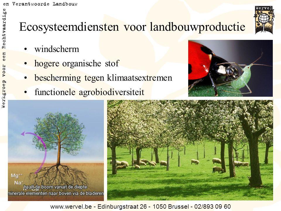 www.wervel.be - Edinburgstraat 26 - 1050 Brussel - 02/893 09 60 Ecosysteemdiensten voor landbouwproductie windscherm hogere organische stof beschermin
