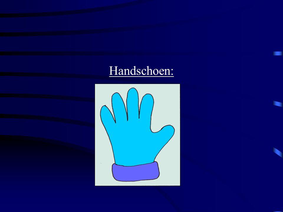 Handschoen:
