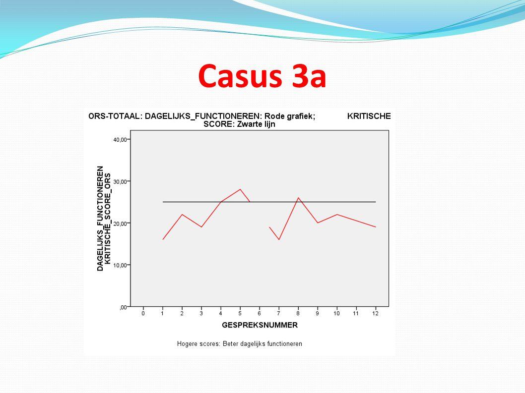 Casus 3a