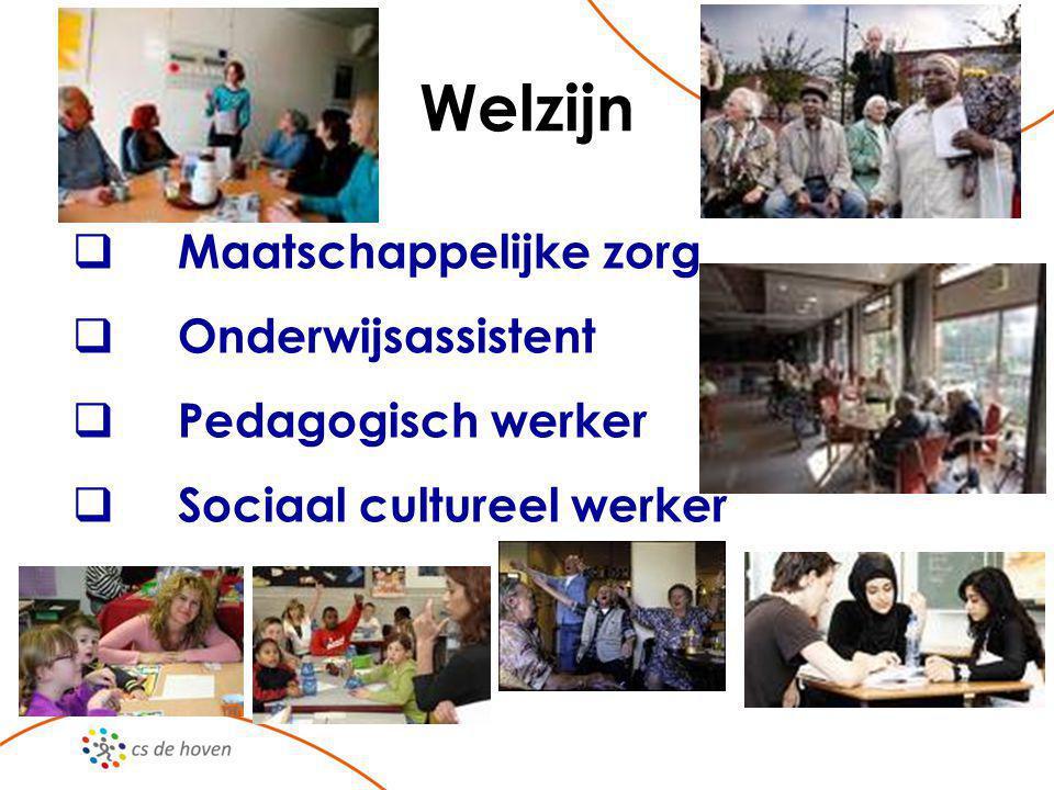 Welzijn  Maatschappelijke zorg  Onderwijsassistent  Pedagogisch werker  Sociaal cultureel werker