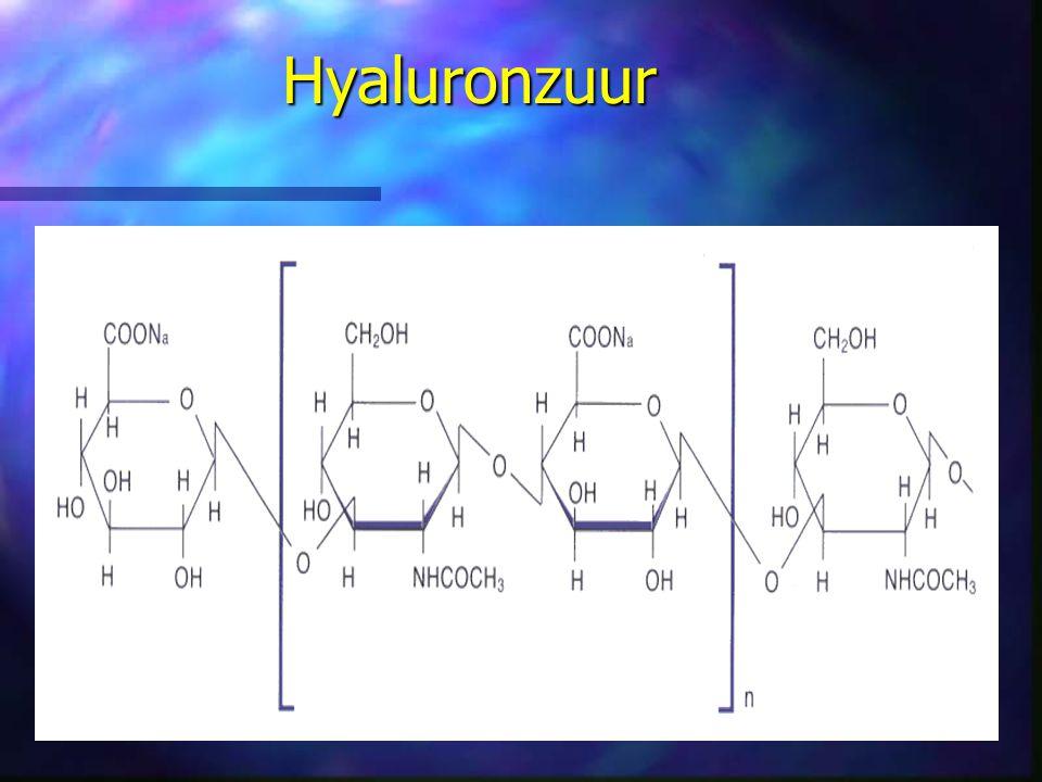 Hyaluronzuur