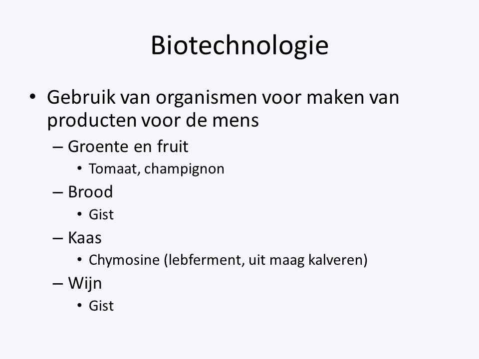 Biotechnologie Gebruik van organismen voor maken van producten voor de mens – Groente en fruit Tomaat, champignon – Brood Gist – Kaas Chymosine (lebfe