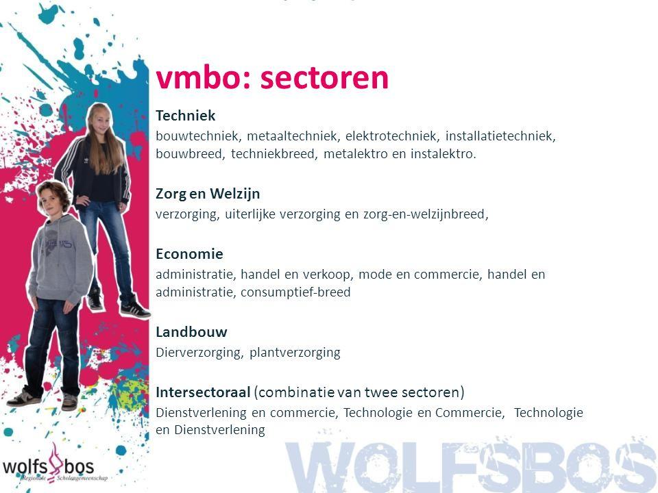 vmbo: sectoren Techniek bouwtechniek, metaaltechniek, elektrotechniek, installatietechniek, bouwbreed, techniekbreed, metalektro en instalektro. Zorg