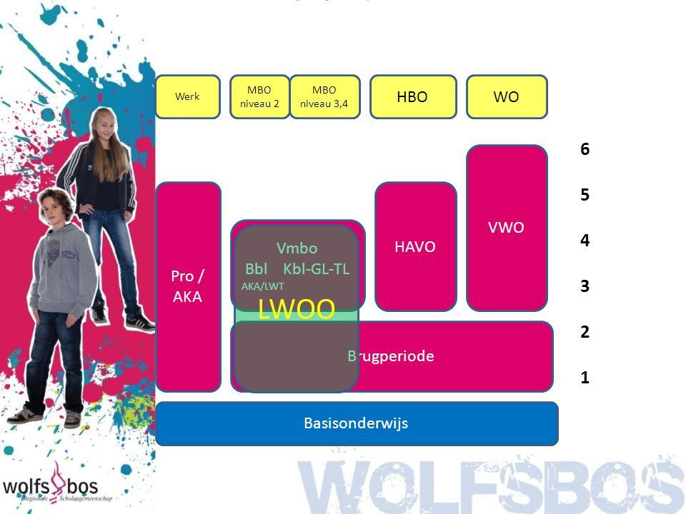 Basisonderwijs Vmbo Bbl Kbl-GL-TL AKA/LWT Pro / AKA HAVO Brugperiode VWO 654321654321 Werk MBO niveau 2 MBO niveau 3,4 HBOWO LWOO