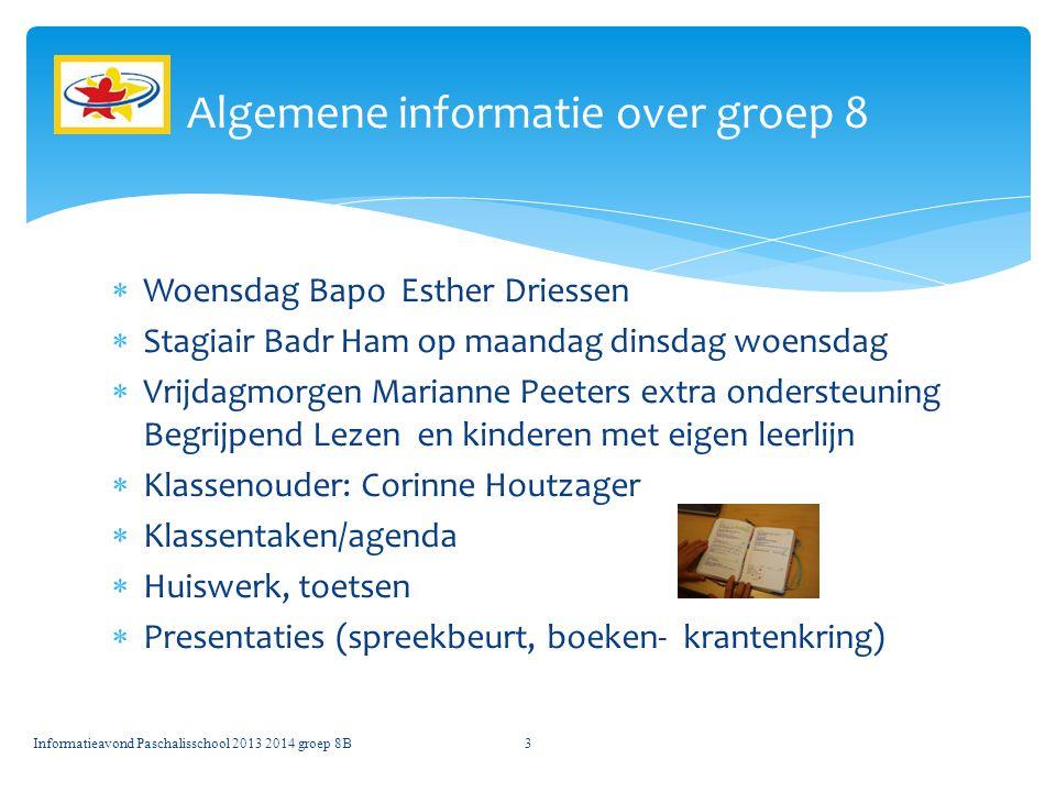  Woensdag Bapo Esther Driessen  Stagiair Badr Ham op maandag dinsdag woensdag  Vrijdagmorgen Marianne Peeters extra ondersteuning Begrijpend Lezen