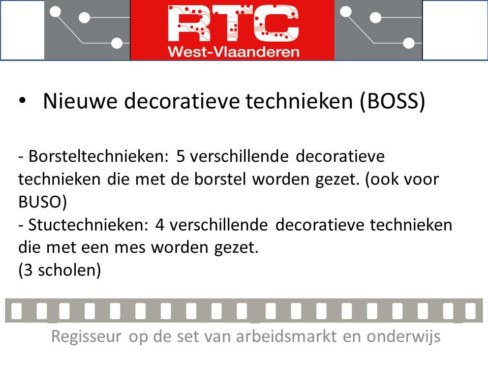 Regisseur op de set van arbeidsmarkt en onderwijs Nieuwe decoratieve technieken (BOSS) - Borsteltechnieken: 5 verschillende decoratieve technieken die met de borstel worden gezet.
