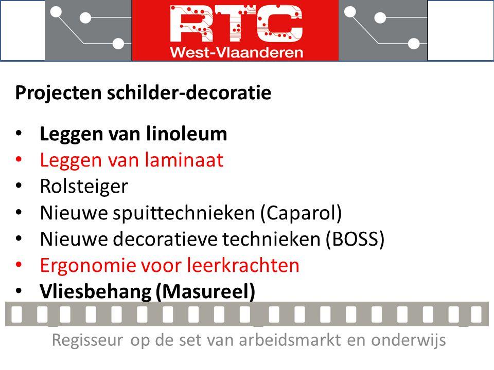 Regisseur op de set van arbeidsmarkt en onderwijs Projecten 2013 Leggen van linoleum Eendaagse opleiding Theorie voorbereiden adhv dvd en vloerenboekje Veel praktijk Opp.