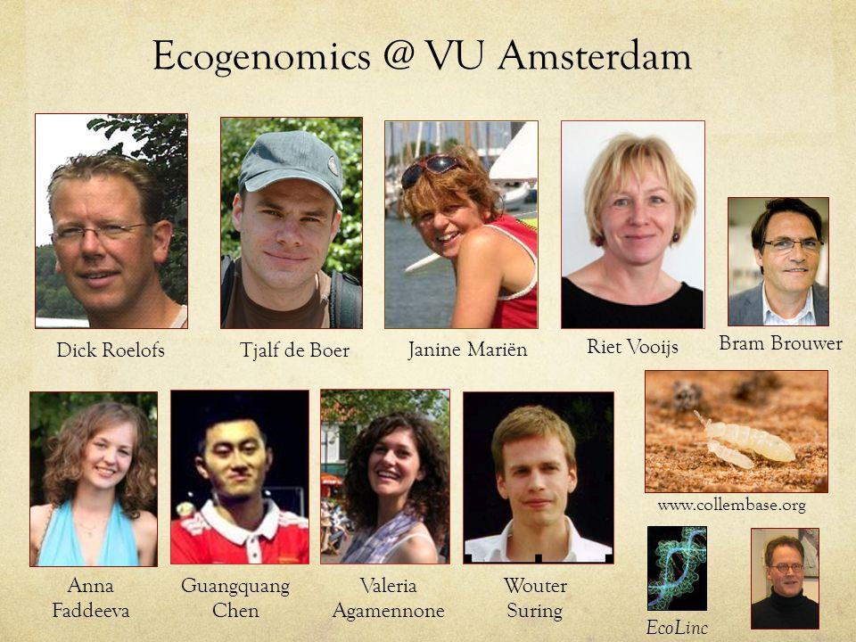 Ecogenomics @ VU Amsterdam Dick RoelofsTjalf de Boer Janine Mariën www.collembase.org EcoLinc Anna Faddeeva Riet Vooijs Guangquang Chen Valeria Agamennone Wouter Suring Bram Brouwer