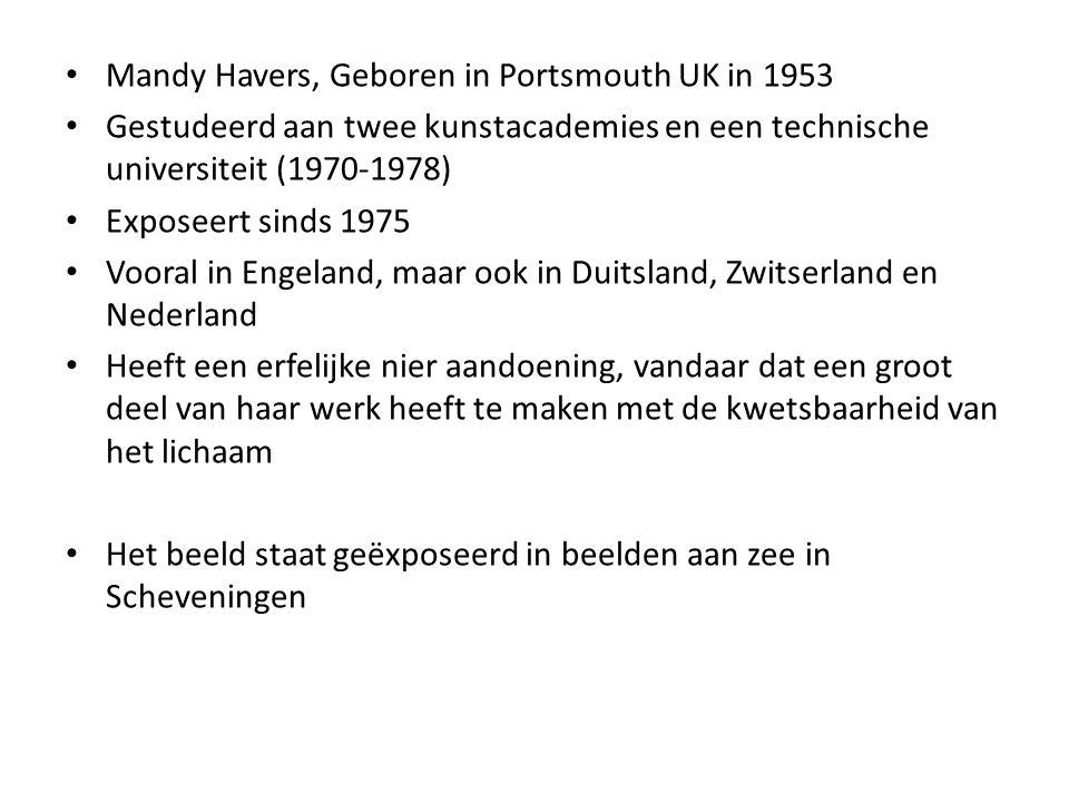 Mandy Havers, Geboren in Portsmouth UK in 1953 Gestudeerd aan twee kunstacademies en een technische universiteit (1970-1978) Exposeert sinds 1975 Voor