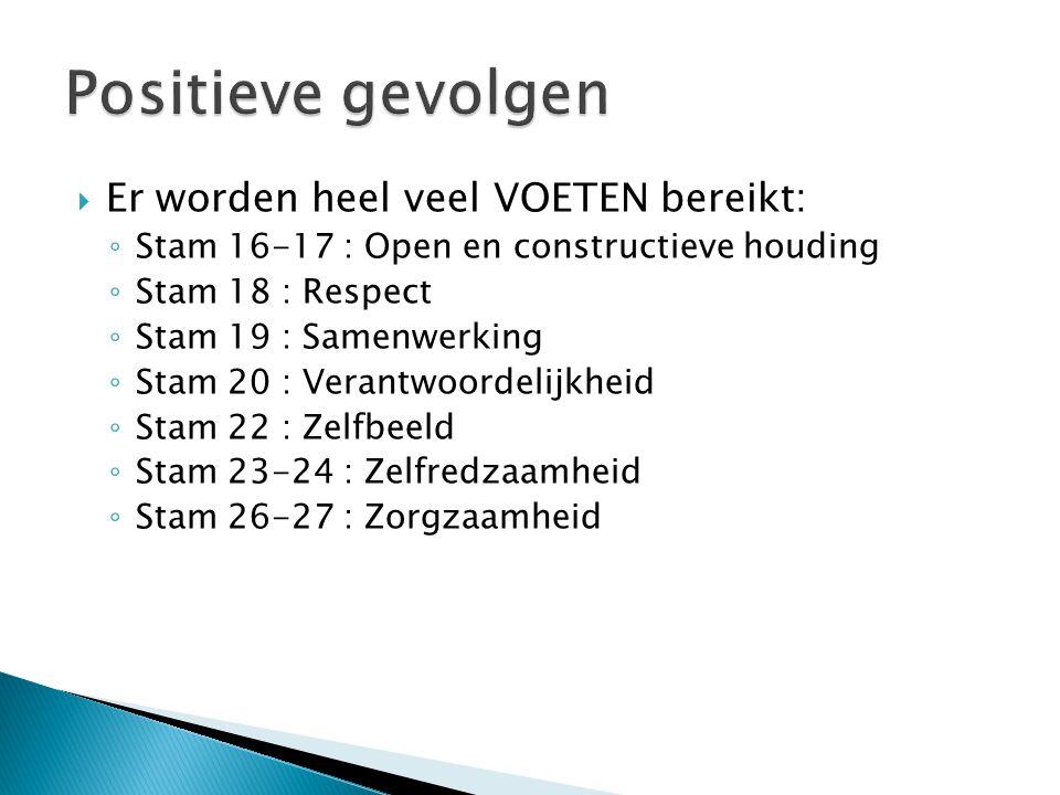  Er worden heel veel VOETEN bereikt: ◦ Stam 16-17 : Open en constructieve houding ◦ Stam 18 : Respect ◦ Stam 19 : Samenwerking ◦ Stam 20 : Verantwoor
