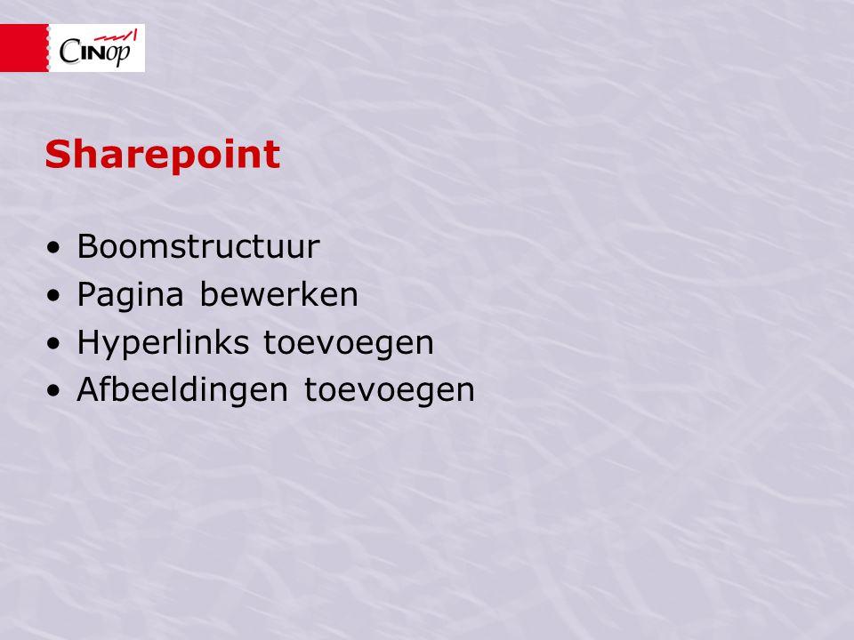 Sharepoint Boomstructuur Pagina bewerken Hyperlinks toevoegen Afbeeldingen toevoegen