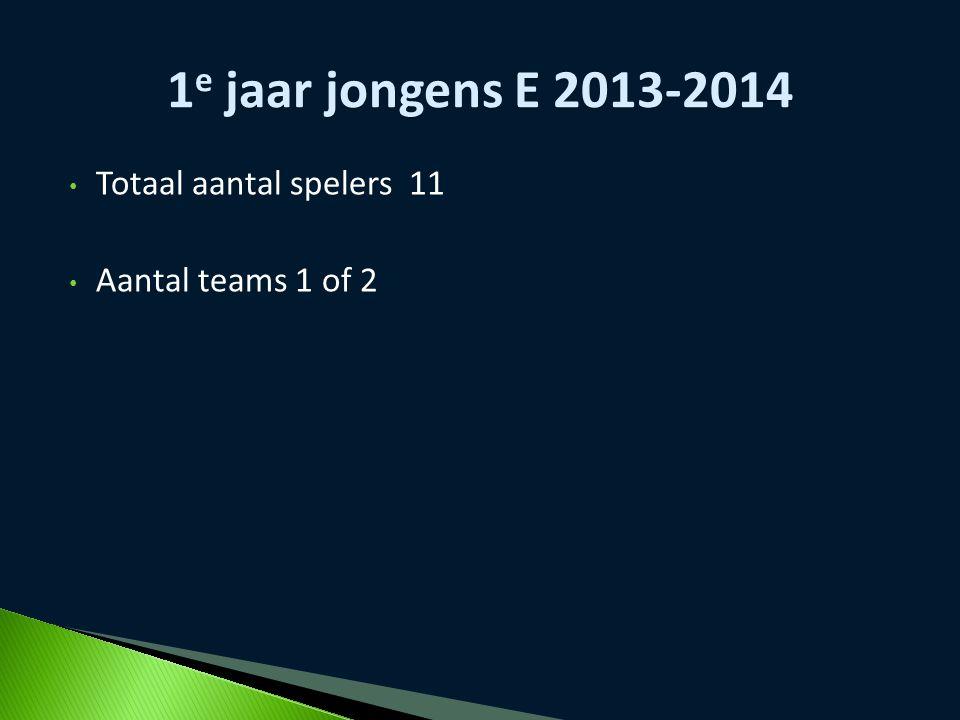 Totaal aantal spelers 11 Aantal teams 1 of 2 1 e jaar jongens E 2013-2014