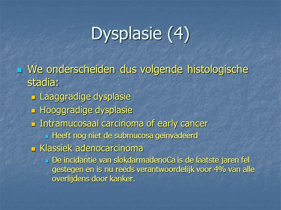 Dysplasie (4) We onderscheiden dus volgende histologische stadia: We onderscheiden dus volgende histologische stadia: Laaggradige dysplasie Laaggradig