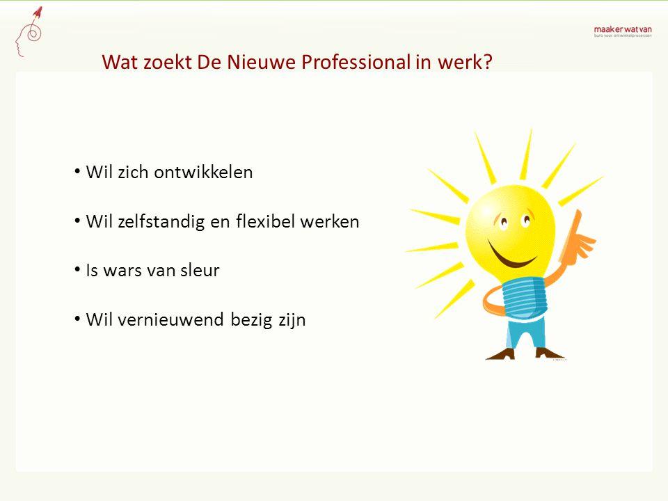Wat zoekt De Nieuwe Professional in werk.