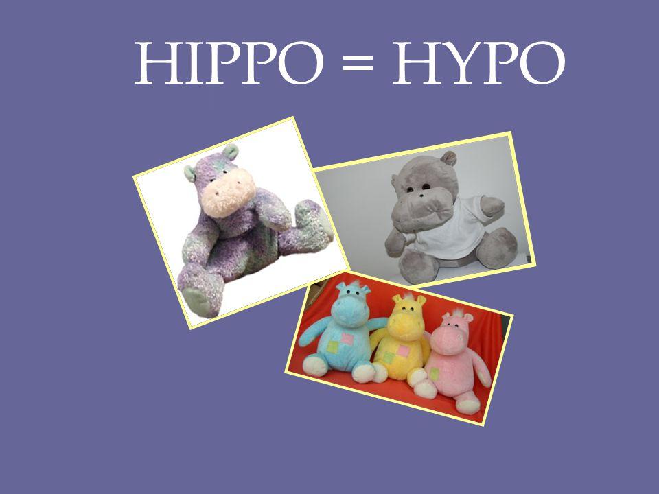 HIPPO = HYPO