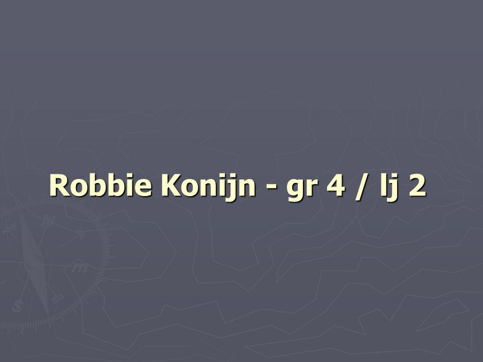 Robbie Konijn - gr 4 / lj 2