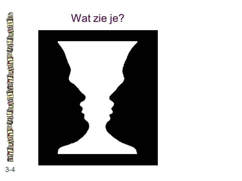 Wat zie je? 3-4
