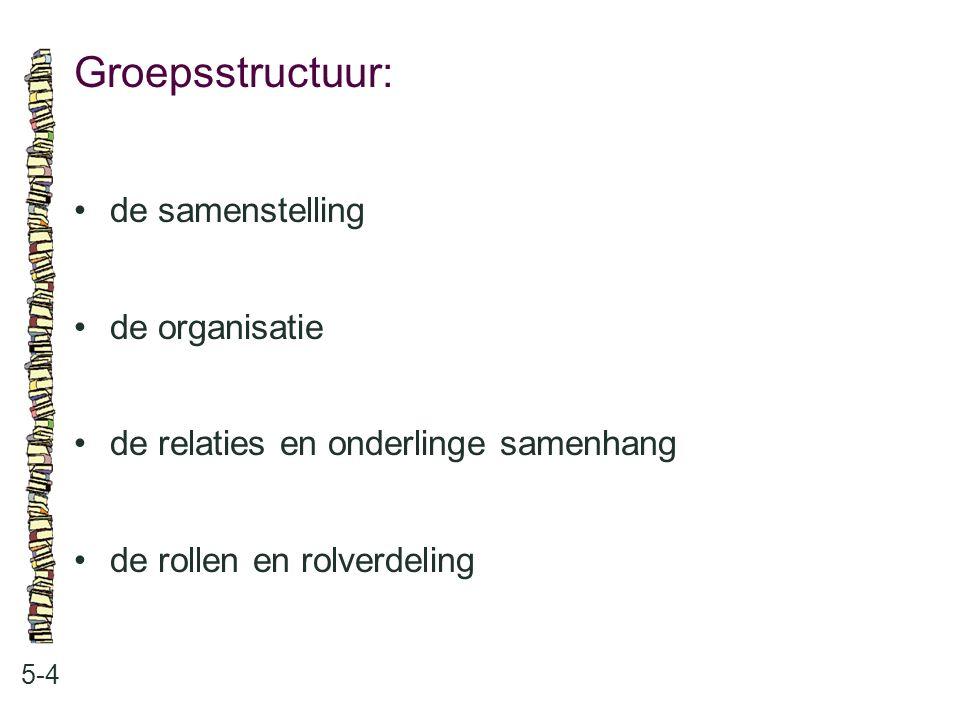 Groepsstructuur: 5-4 de samenstelling de organisatie de relaties en onderlinge samenhang de rollen en rolverdeling