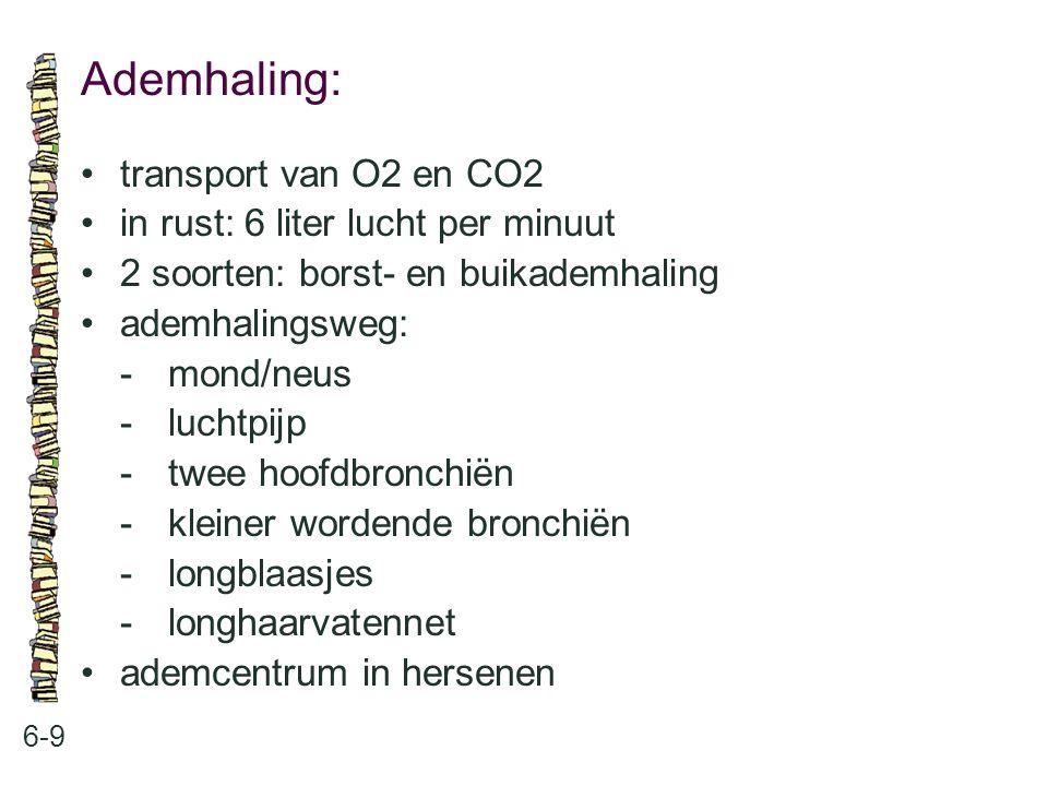 Ademhaling: 6-9 transport van O2 en CO2 in rust: 6 liter lucht per minuut 2 soorten: borst- en buikademhaling ademhalingsweg: -mond/neus -luchtpijp -t